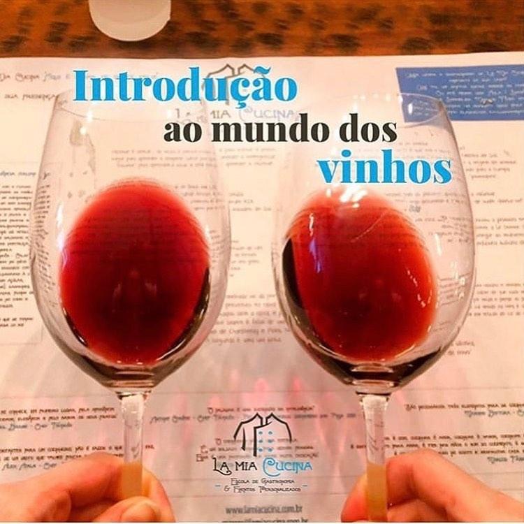 la mia cucina aula introducao ao mundo dos vinhos