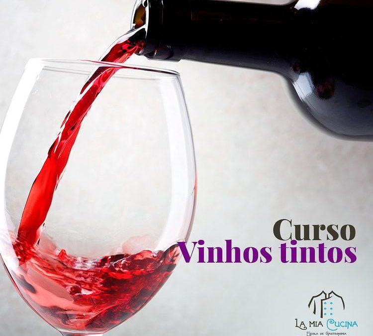 Curso de Vinho tintos
