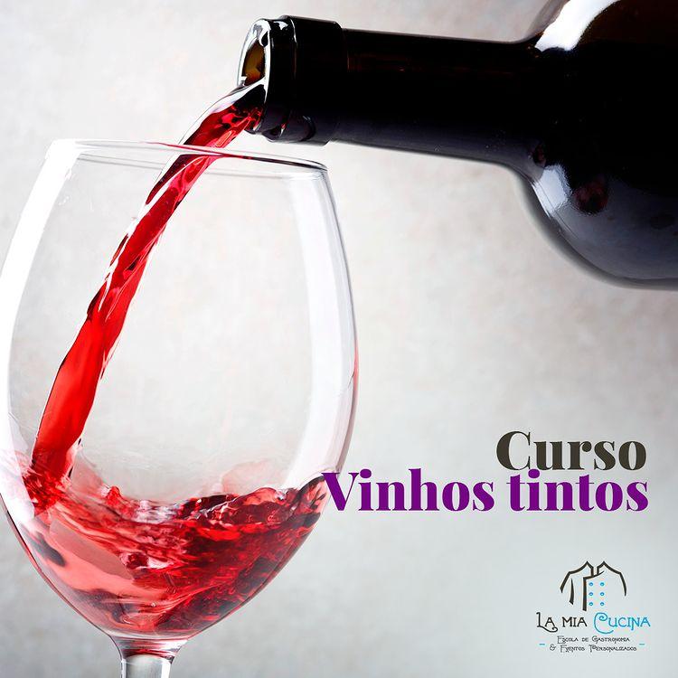 la mia cucina aula gastronomia curso vinhos tintos